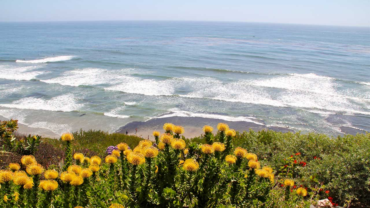 Encinitas-CA-Bluff-Ocean-Reef-View