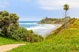 Encinitas-Swamis-Beach-View-Pipes-Ramp-Kyle-Thomas-Photography