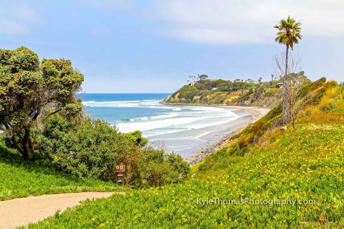 Cardiff-Encinitas-CA-Swamis-Beach-View-Pipes-Ramp-Kyle-Thomas-Photography