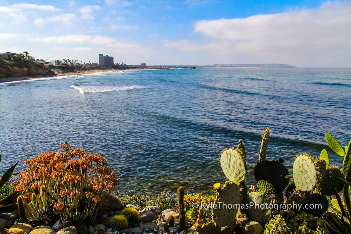 Bird-Rock-La-Jolla-Pacific-Beach-CA