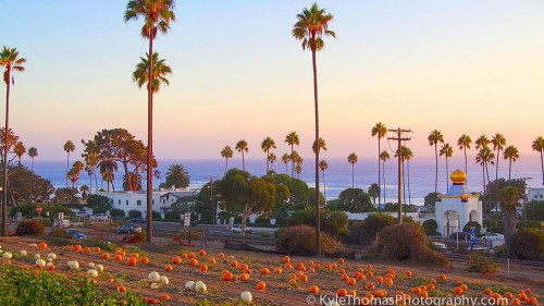 Swamis-Pumpkins-Encinits-Beach-View-Kyle-Thomas