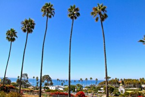 Panoramic-Coastal-View-Swamis-Beach-Encinitas-Ca