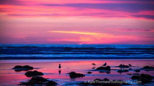 Cardiff-Reef-Sunset-Kyle-Thomas-Photography